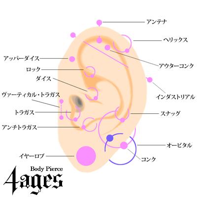 耳のピアス名称